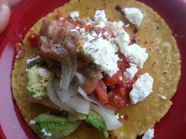 Kavu Taco5